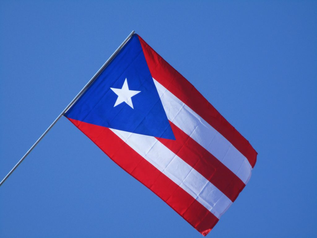 Taken by Gidalys, Age 10: Puerto Rican Flag