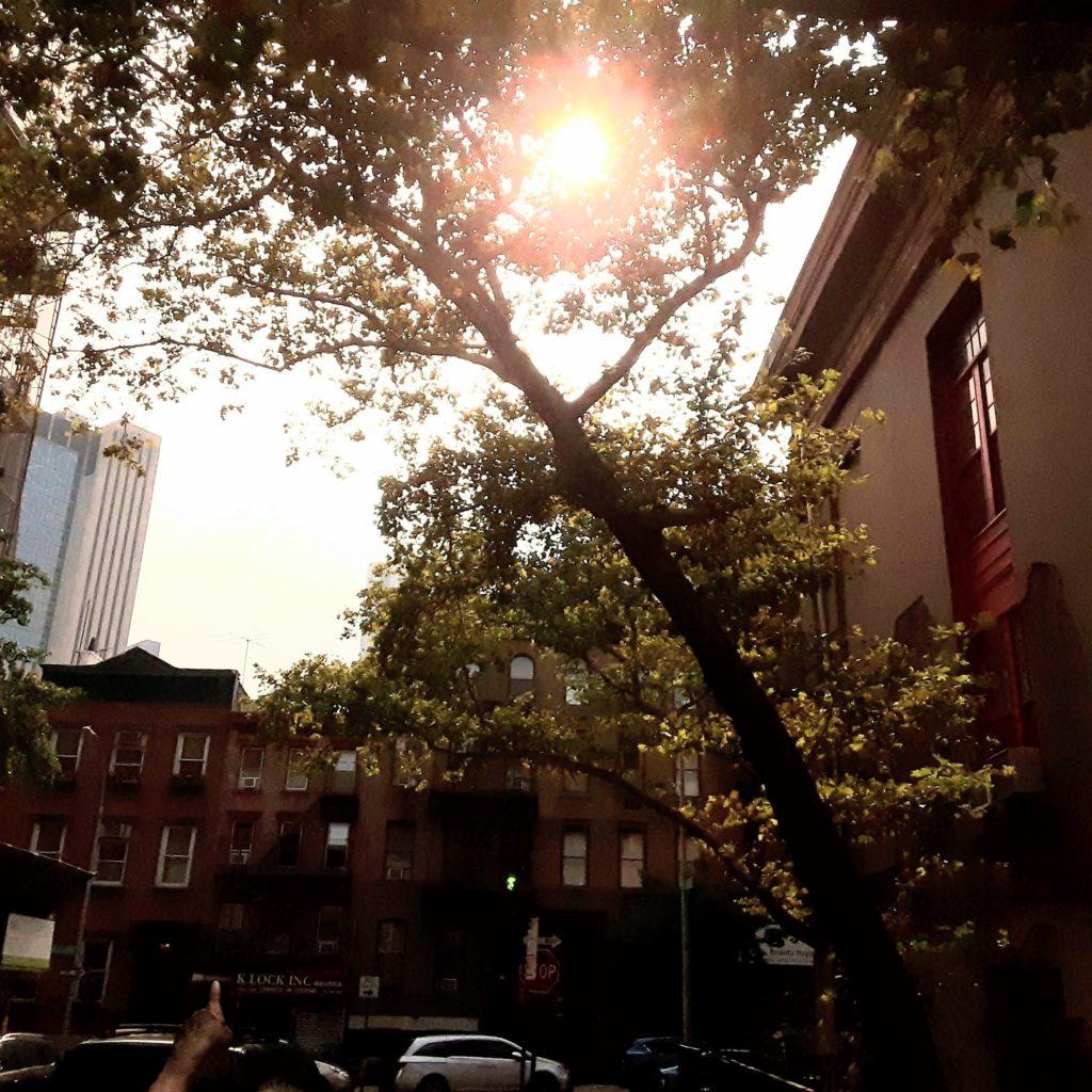 """""""Warm Sunlight"""" by Shi-En"""